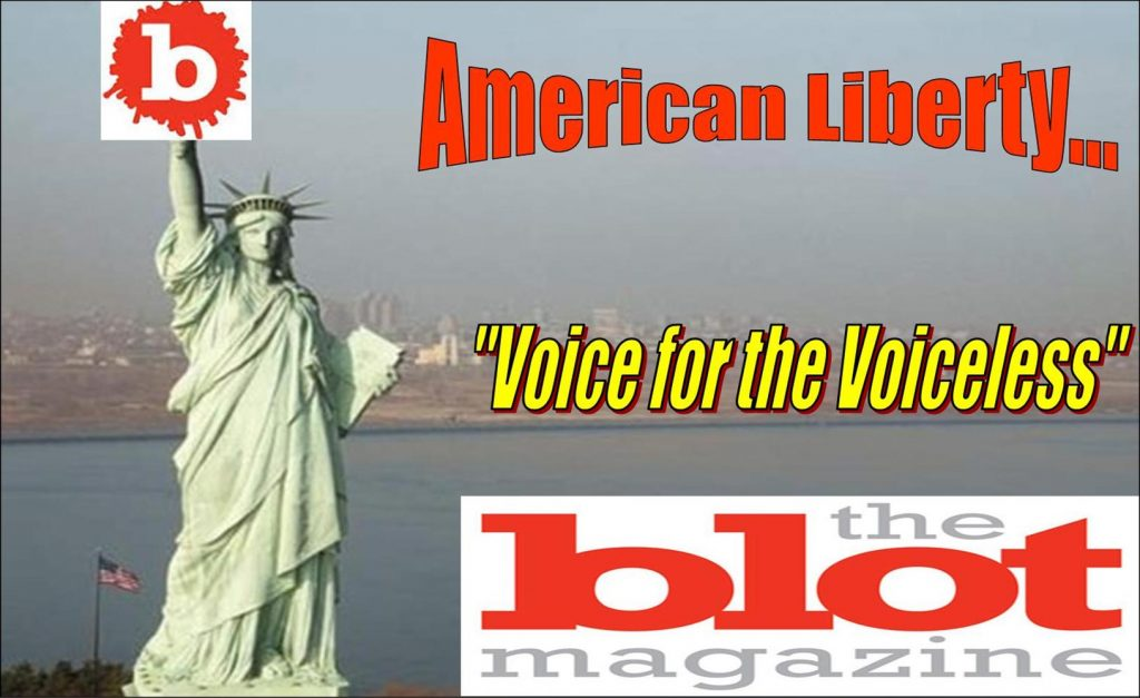 Privacy Policy, TheBlot Magazine, Voice for American Liberty
