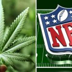 Crucial Lessons Businesses Can Learn From the NFL