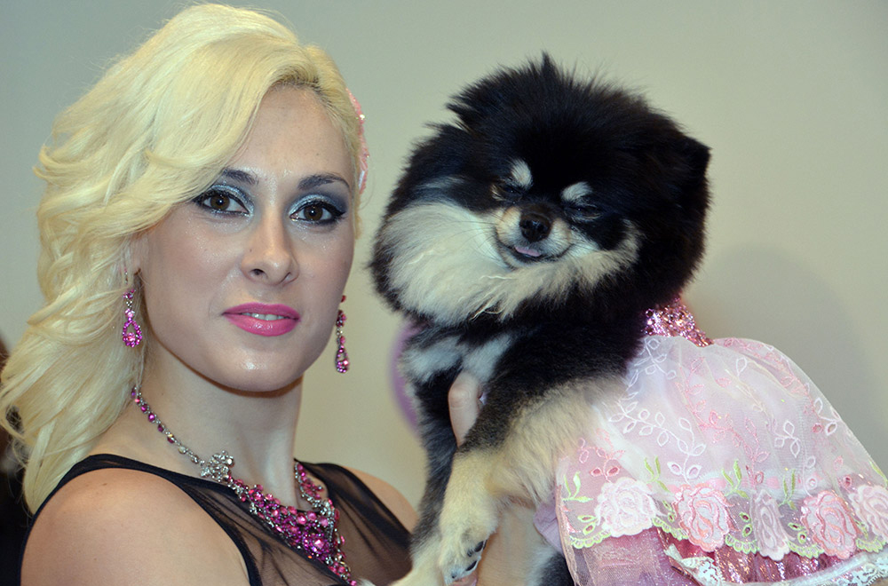 Puppy Prom