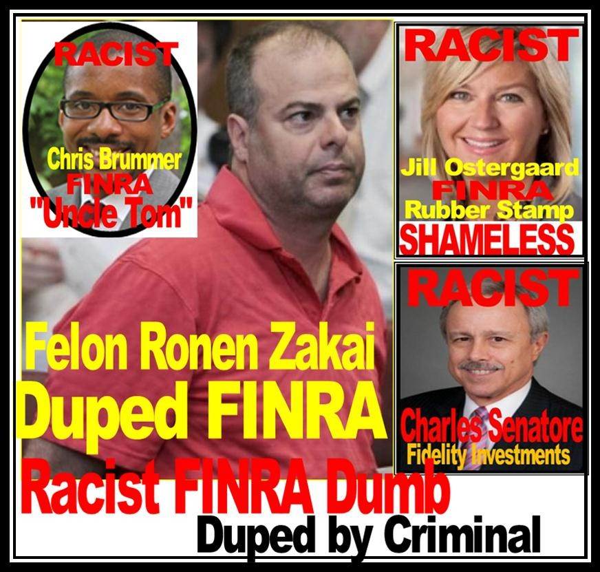 CRIMINAL RONEN ZAKAI, MAUREEN GEARTY DEFRAUDED Charles Senatore, Jill Ostergaard, Chris Brummer, RICK KETCHUM, FINRA National Adjudicatory Council
