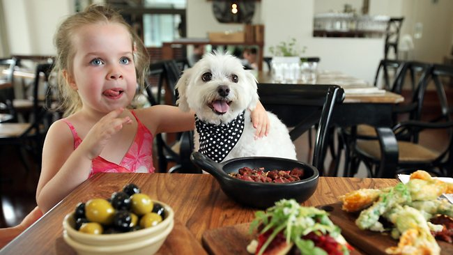 Bone Appetit! Dogs Will Be Allowed in California Restaurants