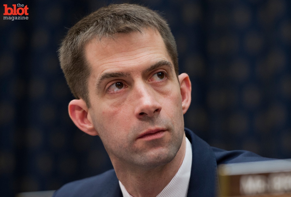 The plot thickens in anti-gay Rep. Tom Cotton/NRA Grindr ad story: Both call ads fake, and Anonymous hackers allegedly have a photo of Cotton at a gay bar.