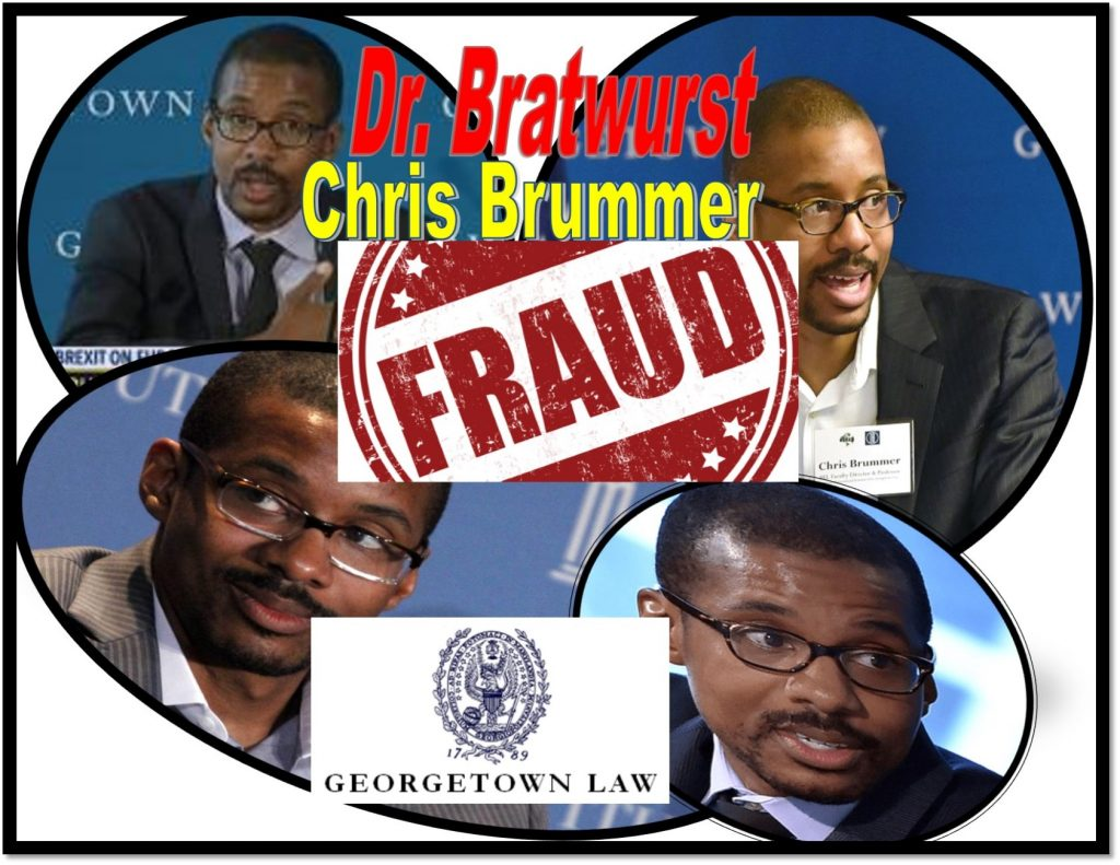 Chris Brummer, Georgetown Law professor, FINRA NAC, sued for fraud, defamation, Rachel Loko, Rachel Loko Brummer, Chauncey Brummer implicated