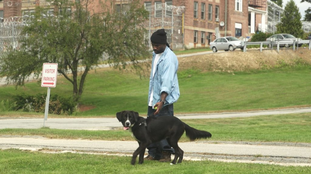 Inmate Thomas Byram walks the prison grounds with one of the dogs.