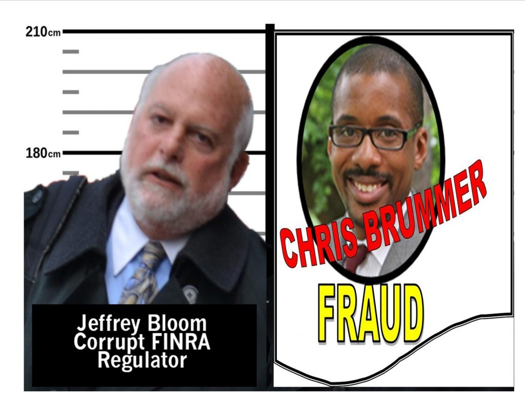 FINRA STAFFER JEFFREY BLOOM, CHRIS BRUMMER, GEORGETOWN LAW SCHOOL, REGULATORY ABUSERS, FRAUD