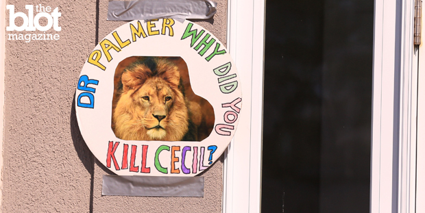The gruesome death of Cecil the lion at the hands of American dentist Walter Palmer on an African trophy hunting trip has caused many to rightly call for an end to such hunts. Above, a poster featuring Cecil outside Palmer's office in Bloomington, Minn. (© Kate Purdy/Demotix/Corbis photo)