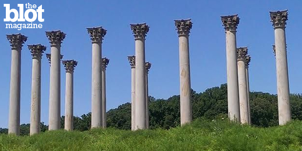 In the first of our 'Park It' series, we visit the U.S. National Arboretum in the middle of our nation's capital — yet seems miles away from its politics. Seen above is one of the park's unique features: Corinthian columns that once graced the Capitol. (Photo by Erin L. Nissley)