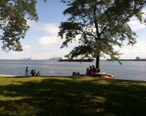 View from the lawn of the Narrows and Manhattan. (Photo courtesy Alice Austen Park)