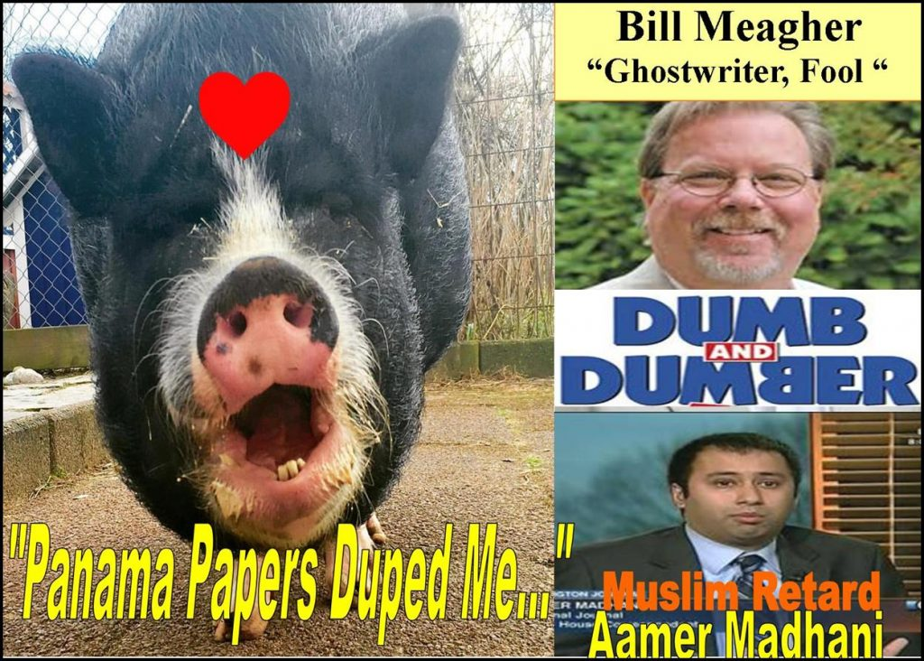BILL MEAGHER, ASSOCIATE EDITOR, THE DEAL, AAMER MADHANI, USA TODAY, PANAMA PAPERS