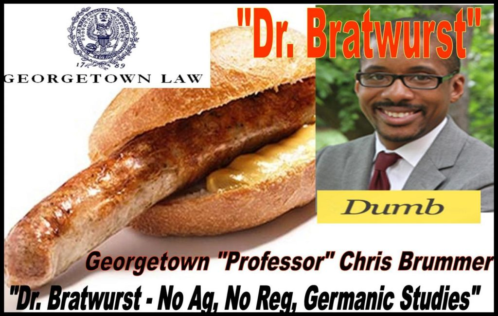 CHRIS BRUMMER, GEORGETOWN PROFESSOR, GERMANIC STUDIES, FRAUD, SEC MELISSA HODGMAN