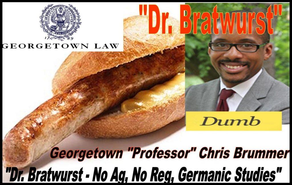 CHRIS BRUMMER, GEORGETOWN PROFESSOR, GERMANIC STUDIES, FRAUD, SEC MELISSA HODGMAN