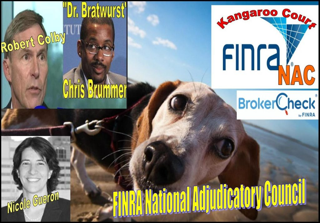 FINRA, FINRA NAC, Kangaroo court, conflict of interest exposed