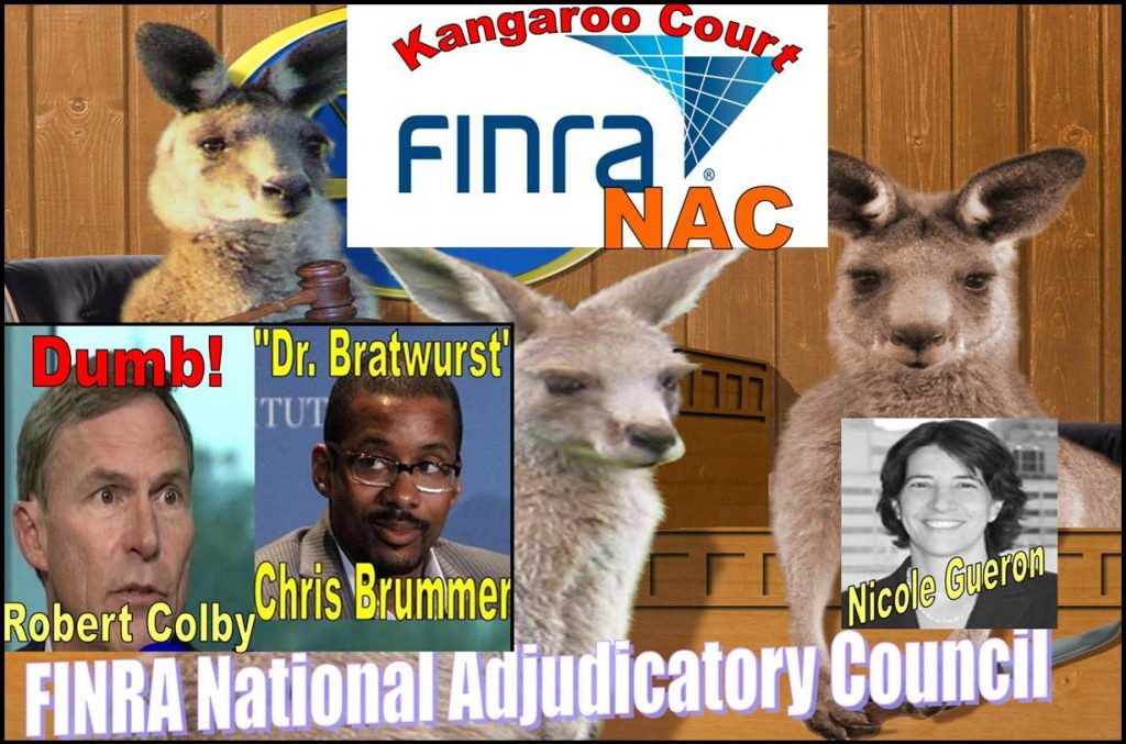 FINRA NATIONAL ADJUDICATORY COUNCIL, FINRA NAC, KANGAROO COURT, NICOLE GUERON, ROBERT COLBY, CHRIS BRUMMER FRAUD