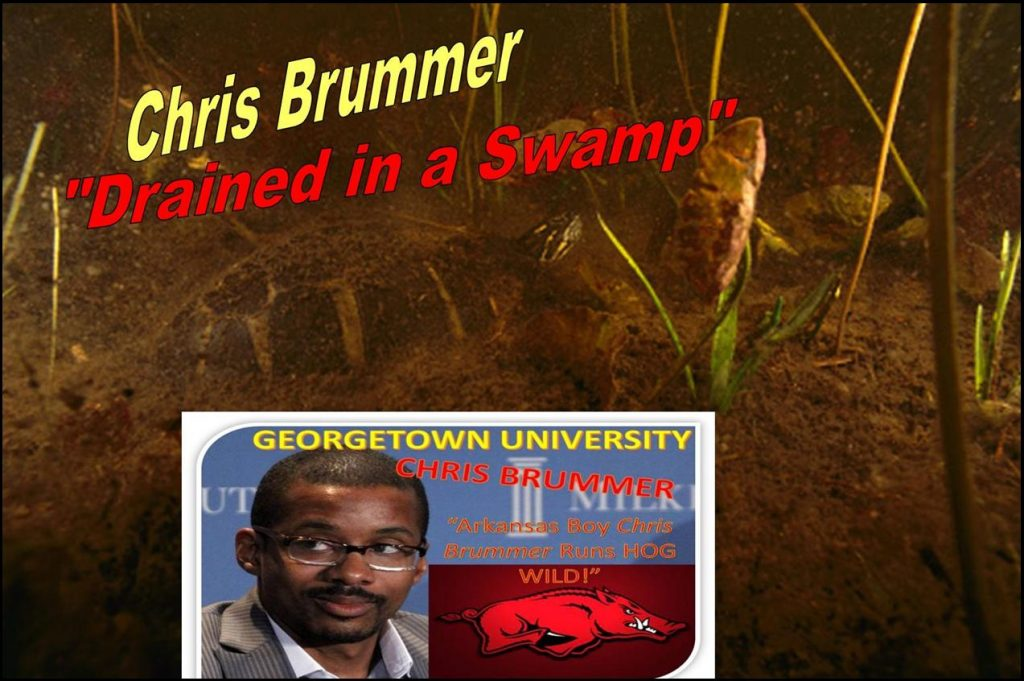 Prof Chris Brummer, CFTC Nominee, Brian Quintenz, Neil Chatterjee, CFTC Confirmation Fraud
