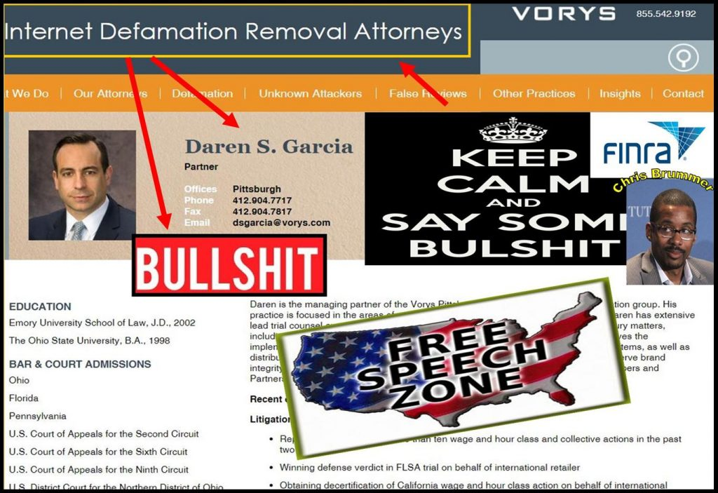 DAREN GARCIA, lawyer, Vorys, internet defamation removal attorney, fraud, Chris Brummer, Nicole Gueron, FINRA, FINRA NAC, Alan Lawhead abusers
