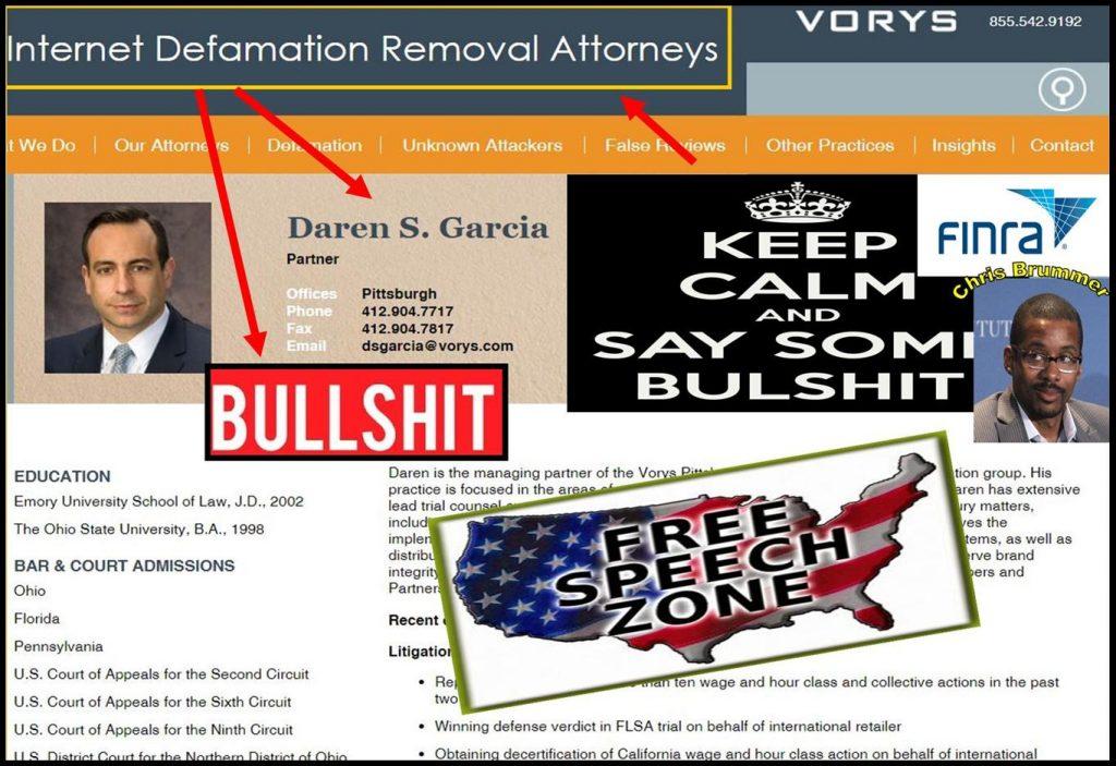 DAREN GARCIA, lawyer, Vorys, internet defamation removal attorney, fraud, Chris Brummer, Nicole Gueron, FINRA, FINRA NAC, Alan Lawhead abusers