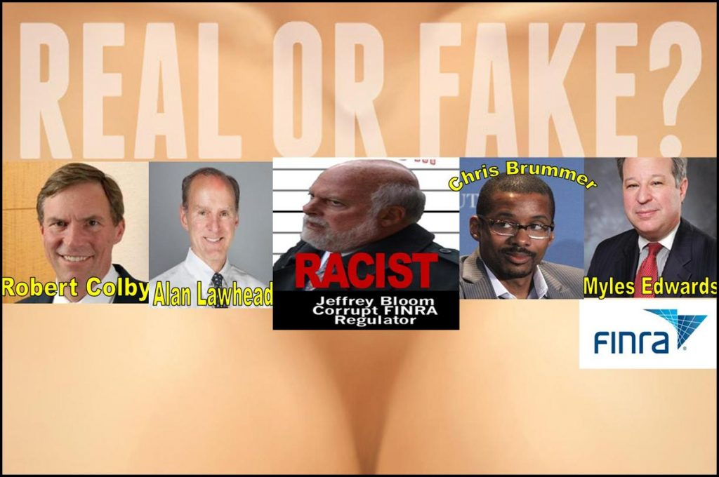 FINRA REGULATORY ABUSE, ROBERT COLBY, ALAN LAWHEAD, JEFFREY BLOOM, CHRIS BRUMMER, MYLES EDWARSD, FINRA NAC