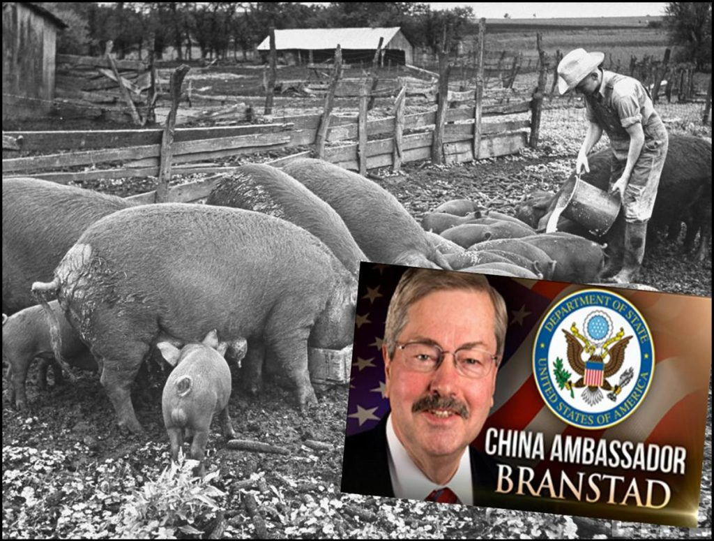 Terry Branstad, Can the Iowa Farm Boy Become American Ambassador to China