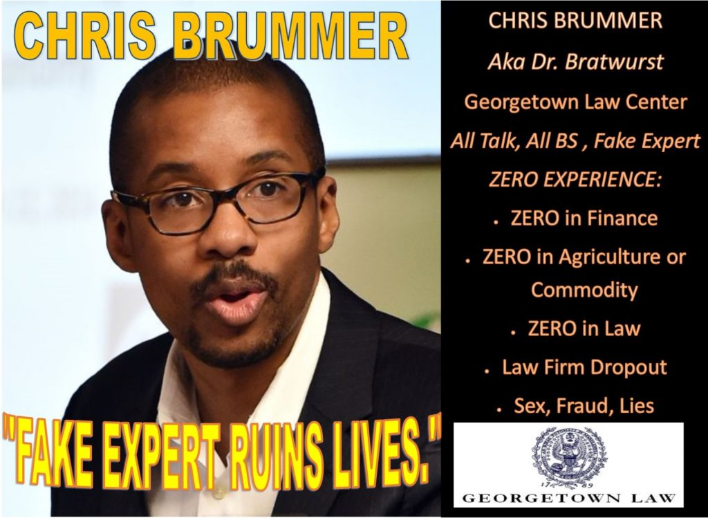 Meet Chris Brummer, Georgetown Law Center Dr Bratwurst, Fake Expert Exposed