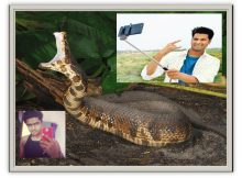 BREAKING SELFIE ADDICTION CAUSES VISCOUS SNAKE ATTACK