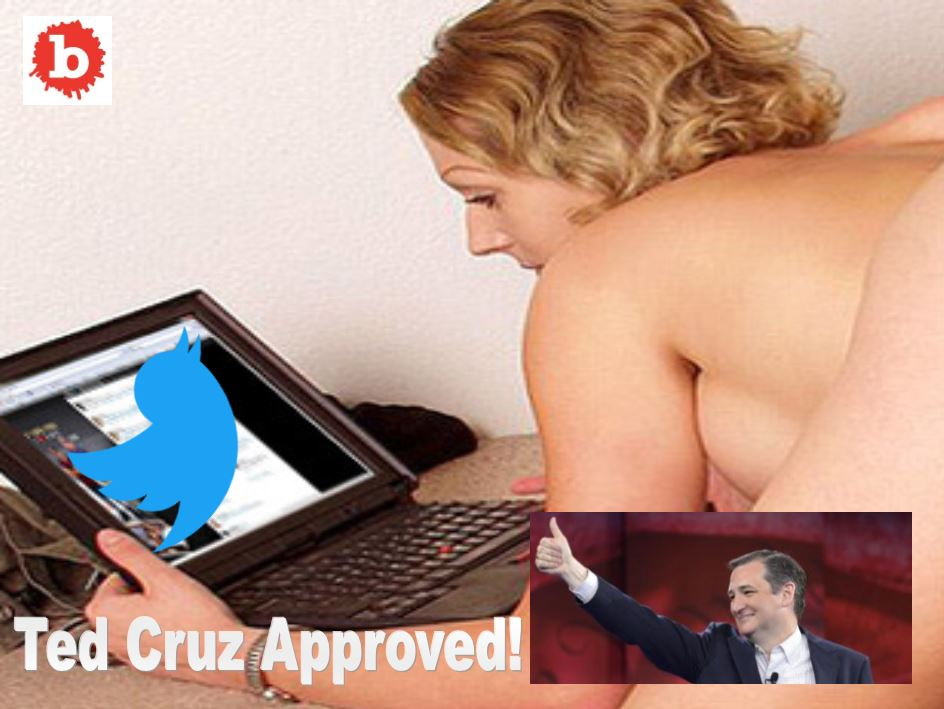 Ted Cruz Likes Porn Video on Twitter, He Should Have Paid to Watch