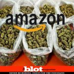 Amazon Delivers 65 Pounds of Weed with Ordered Storage Bins