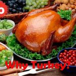 Turkey is the Main dish for Thanksgiving Celebrations, but Why