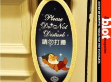 Disney Resorts Kill Privacy in Rooms for Security