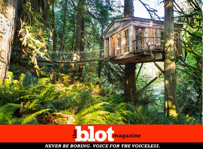 Magical Tree-House Vacation, Be like Fairies and Nymphs in the Heights
