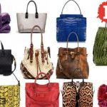 Accessory Handbags Keep You Styling Without Big Bucks
