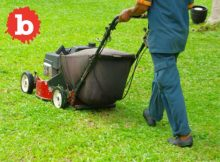Australian Duffers Fight Over Lawn With Knife and Lawn Mower