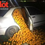 Seville Police Car Stop Finds Cars Overflowing With Oranges
