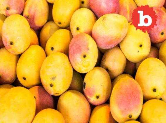 Knowing the Origin of Mango can Save your Life