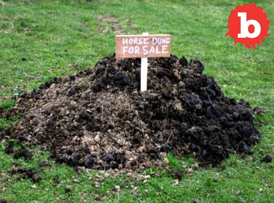 Lotto Winner Dumps 10,000lbs of Manure on Ex-Boss Lawn