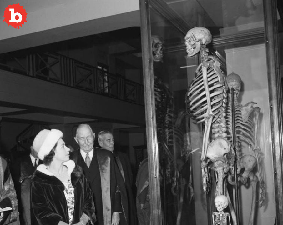 7-Foot, 7-Inch Irish Skeleton May Be Freed After 200 Years