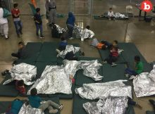 How Are the Poor Kids From the Border Going to Survive?