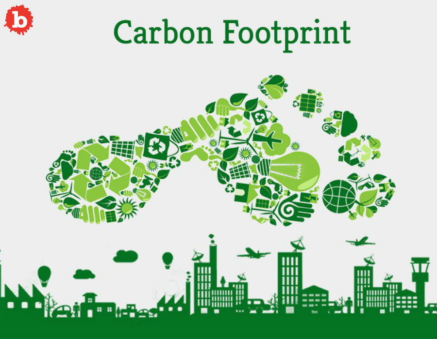 How to Reduce your Carbon Footprint and Increase your Cool