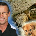 Teacher Who Fed Sick Puppy to Snapping Turtle Charged