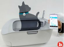 Want a Smart Litter Box That Could Save Your Cat's Life?