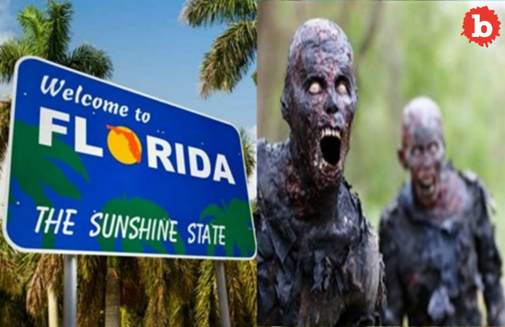 Zombie Alert in South Florida City After Power Outage