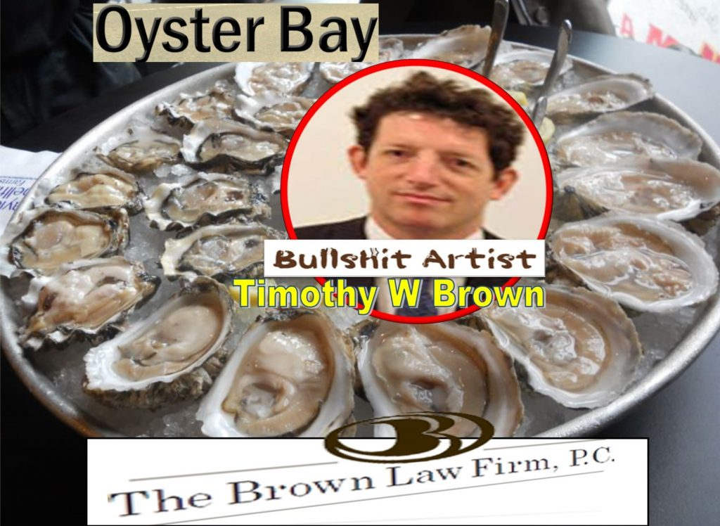 Timothy Brown, the brown law firm, pc, oyster bay, new york, lawyer, plaintiff lawyer, 6d Global Technologies, Tejune Kang, CEO, Tom Fini, Catafago Fini, Judge Robert Sweet