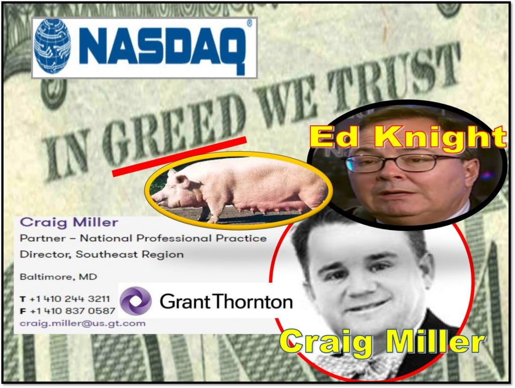 CRAIG MILLER, GRANT THORNTON, partner, NASDAQ Listing and Hearing Review Council, AICPA, Michael Emen, Ed Knight, Adena Friedman, NASDAQ Stock Market, lawsuit, CleanTech Innovations, delisting, fraud