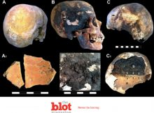 New Findings Show Ancient Vesuvius Eruption Exploded Skulls