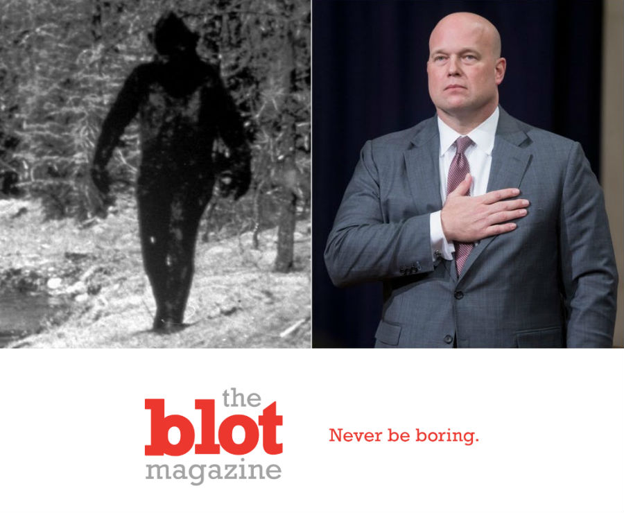 Who is Matthew Whitaker?  Bigfoot, Large Trouser Snakes?