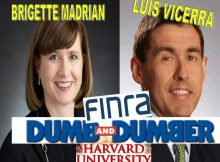 FINRA BOARD PUBLIC GOVERNORS BRIGITTE MADRIAN, LUIS VICEIRA, HARVARD PROFESSORS SHOW RACISM, HATE BLACKS