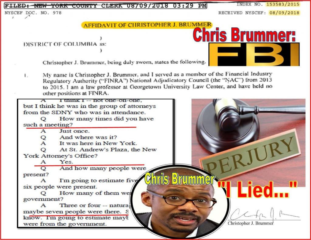 Chris Brummer, Georgetown Law, fintech, crypto, Germanic Studies, lies, FBI, New York Justice Lucy Billings, perjery, FINRA NAC, Robert Colby, Richard Ketchum, Daren Garcia, Nicole Gueron, Ashleigh Hunt fraud