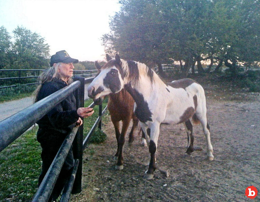 Willie Nelson Saves 70 Horses TakesEm Home to His Ranch