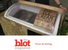 Would Anyone Ever Really Eat Maggot Ice Cream