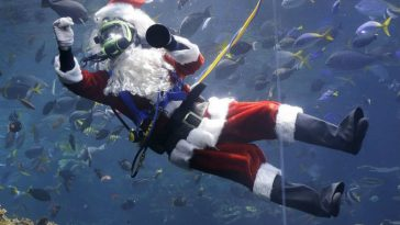 German Santa Goes Underwater at Berlin Sealife Aquarium
