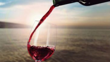 Northern Cali Vineyard Loses 100,000 Gallons of Wine in Spill